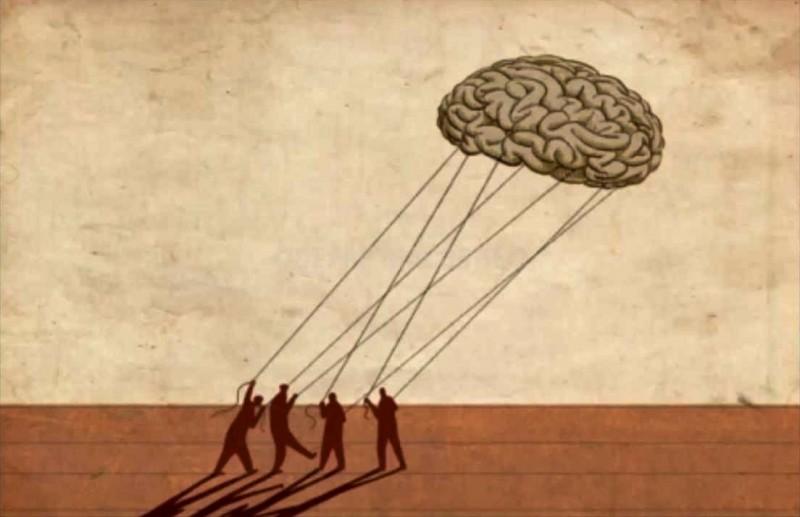 cervelli_fuga